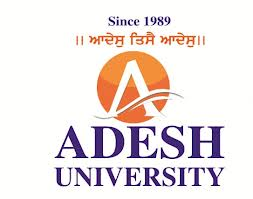 Adesh University result